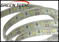 China Warm White 12 Volt Outdoor Led Strip Lighting For Advertisement Sign Lighting factory
